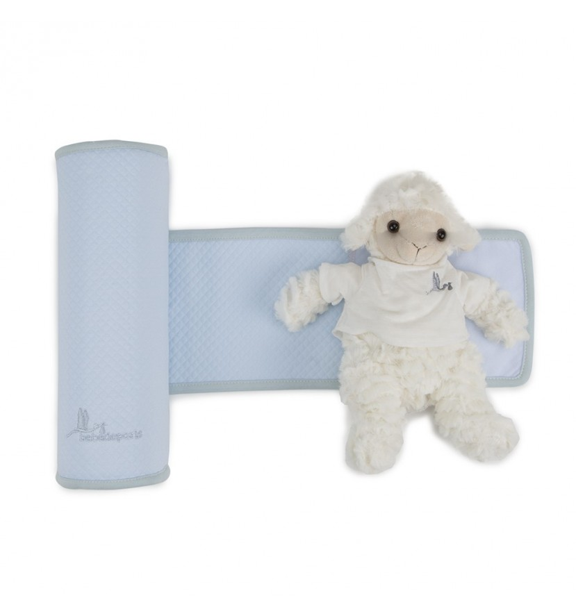Blue Baby Anti Roll Cushion