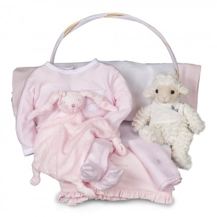 Serenity Essential Baby Gift Basket Pink