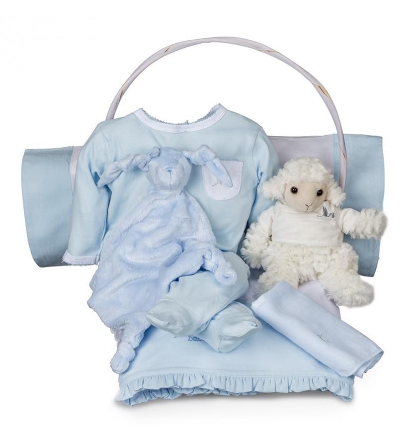 Serenity Essential Baby Gift Basket Blue
