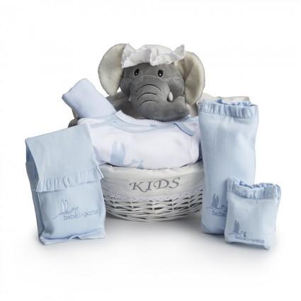 Post-Hospital Essential Baby Gift Hamper blue