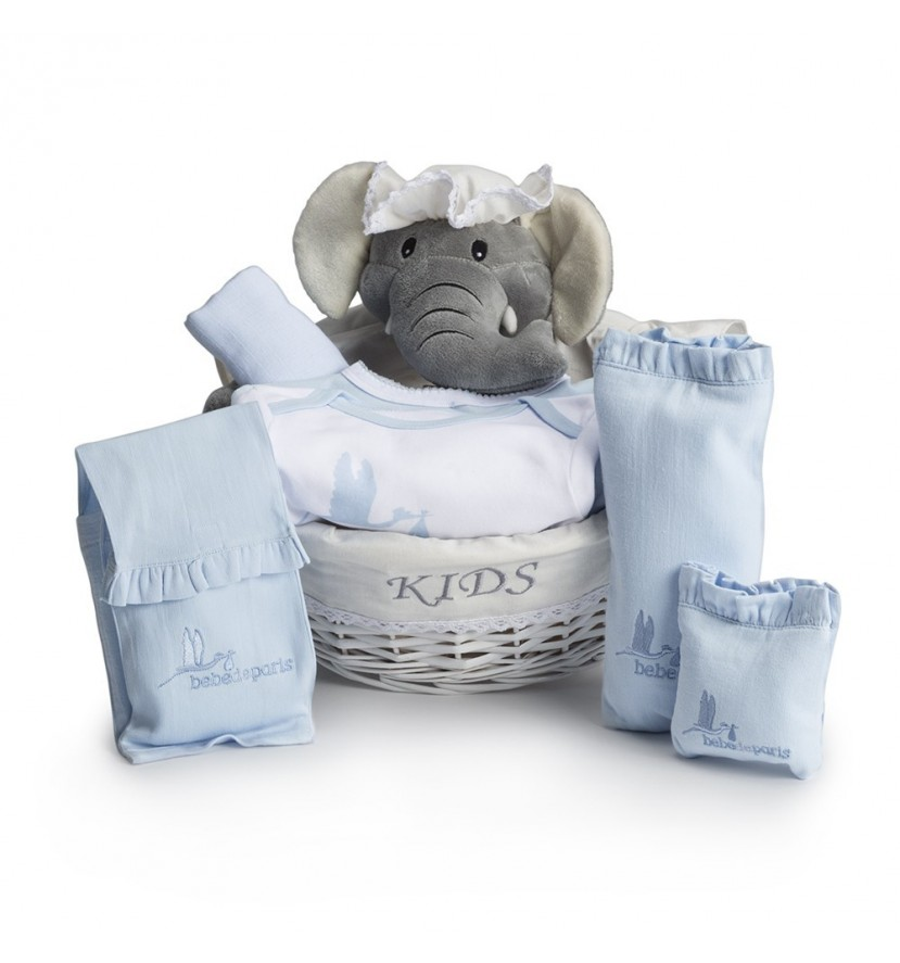 Post-Hospital Essential Baby Gift Basket Blue